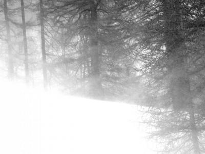 la-neige-2-h2-1.jpg